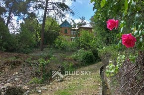Cyprus property for sale in Kato Platres, Limassol