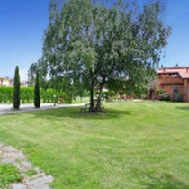 Italy holiday rentals in Tuscany, Betulla