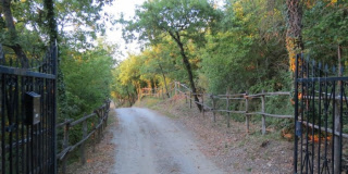 Italy property for sale in San Venanzo, Umbria