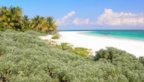 Mexico  in Quintana Roo, Mahahual