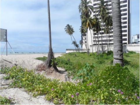 Terreno en venta en Jaboatao Dos Guararapes