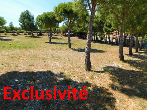 Frankrijk  in Languedoc-Roussillon, Fitou