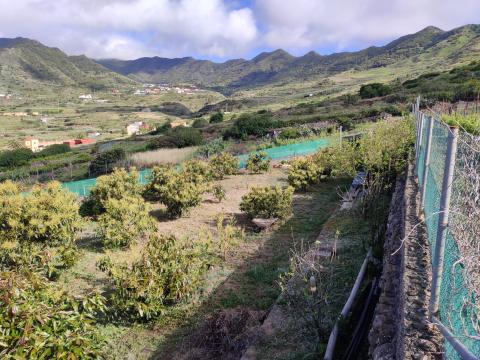 Spanje  in Canary Islands, Buenavista-Del-Norte