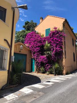 Huizen-Villa te koop in Liguria