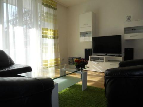 Netherlands long term rental in North Brabant, Tilburg