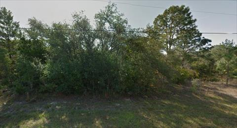 USA property for sale in Citrus Springs, Florida